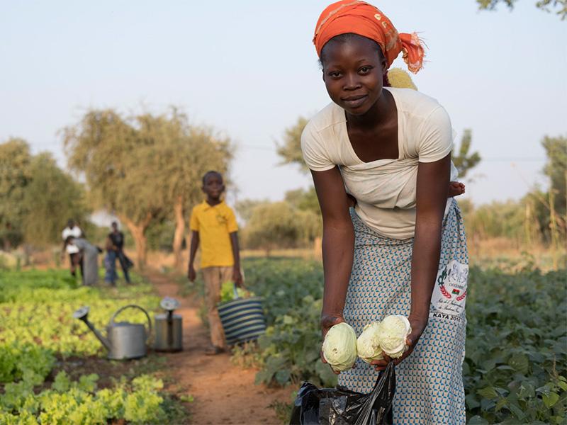 Eine Frau auf einem Feld in Afrika